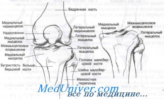 térd ízületi gyulladása, amelyet nem lehet megtenni a kéz könyökízületeinek gyulladása