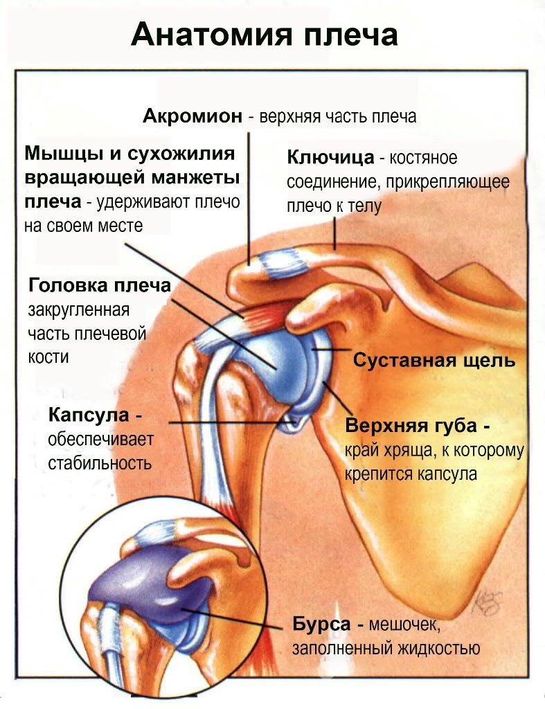 hogyan kell kezelni a boka sérülését a deformáló artrózis őssejt kezelése