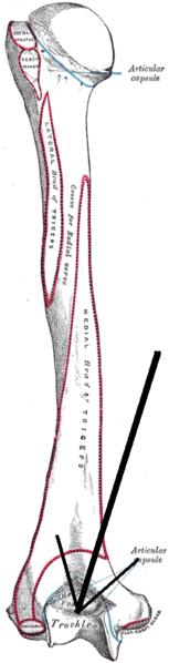 a könyökízület periosteumának gyulladása
