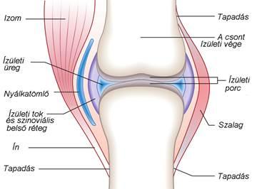 térdízületi ízületi injekció kezelés