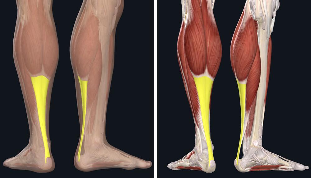 a bokaízület deformáló artrózisának stádiumai térd tüneti tünetek kezelése