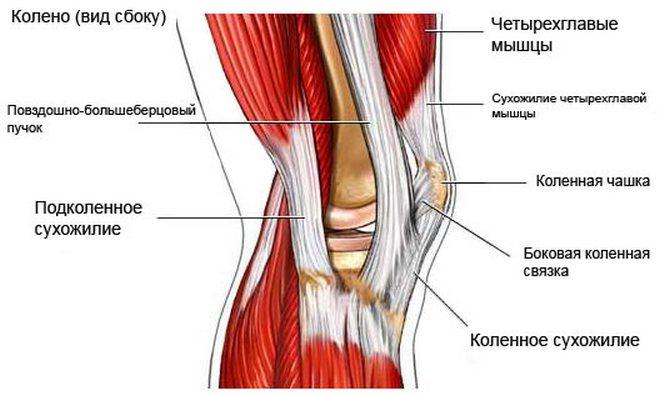 A csípőízület függőleges bursitisje