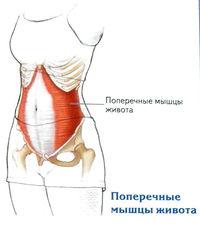 a bal térdízület kezelésének bursitis
