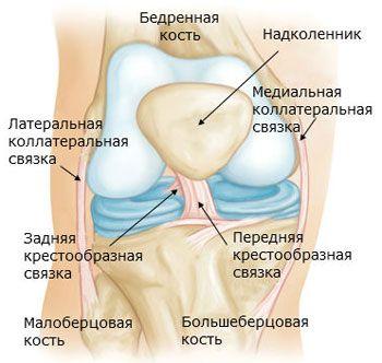minden alsó ízület fáj mit kell venni a térdízületek fájdalma miatt