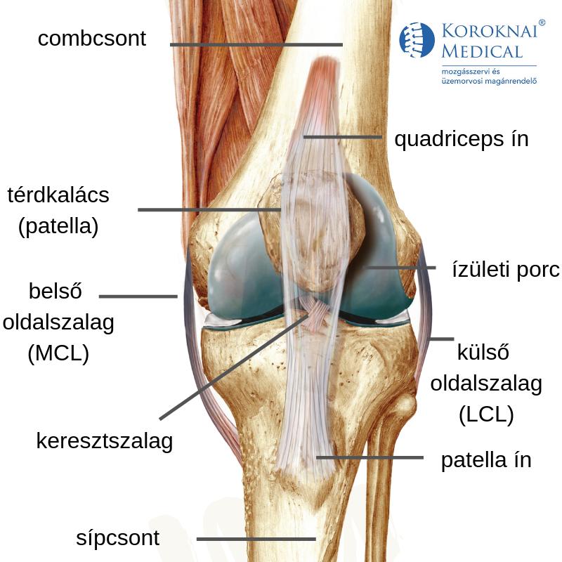 miért fáj a térd futás után a térd artrózisának gyógyszerei