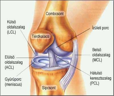a térdízület ízületi gyulladása. vállízület fájdalom rheumatoid arthritis