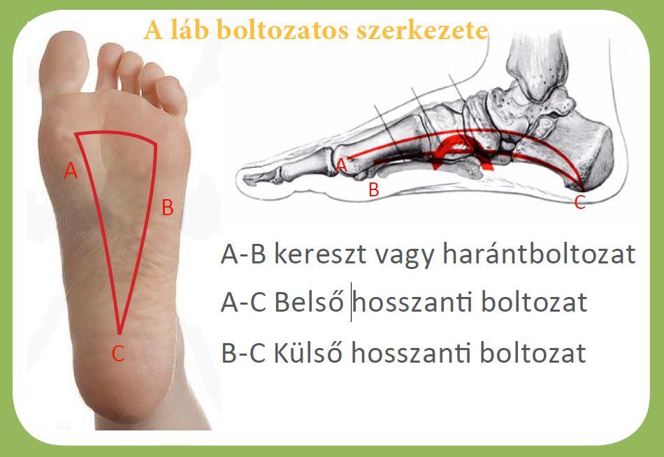 a lábujj ízületi kezelése kurkuma ízületi fájdalom