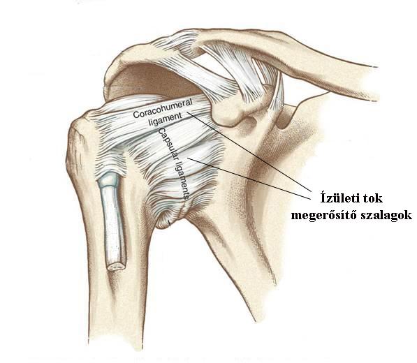 arthrosis kezelés ulyanovskban fájdalom a lábgél ízületeiben