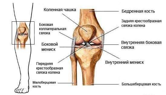 A lábkötések típusai