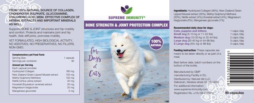 Tudnivalók a kutya ízületgyulladásáról (osteoarthritis)