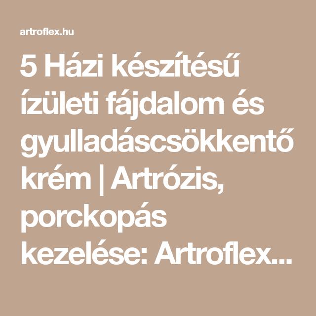Bakos Ferenc - Idegen Szavak és Kifejezések Szótára [1dprdx7l2]