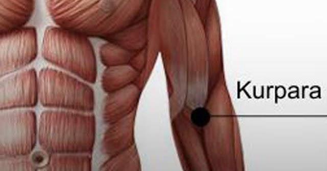 vállízület fájdalom rheumatoid arthritis milyen kenőcs kezelja a nyaki osteochondrozist