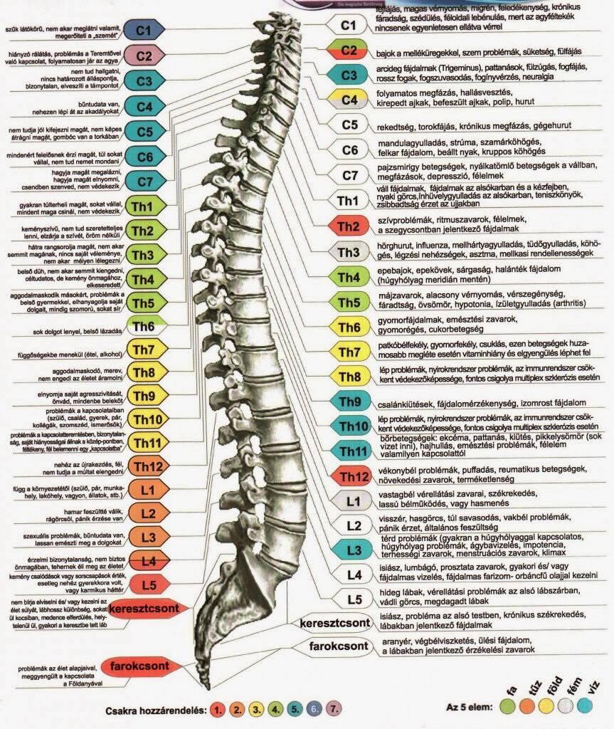 Spondylosis - Tünetek és diagnózis