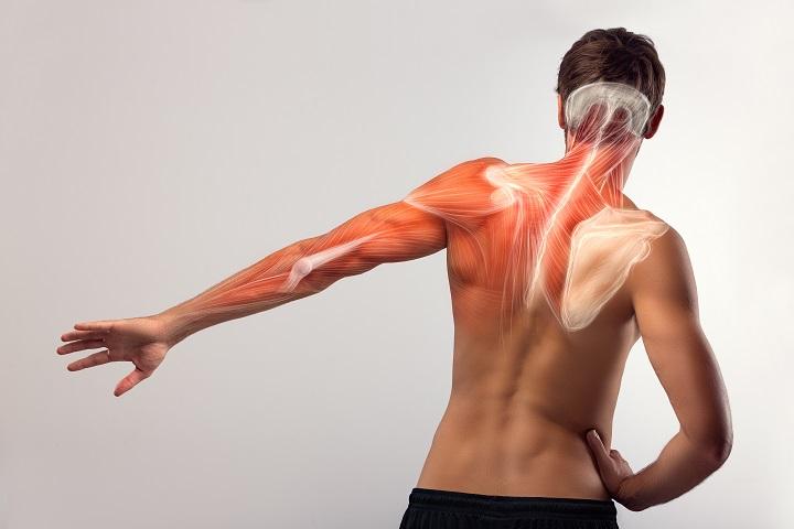 váll fájdalom kattintások térdízületi fájdalom diéta