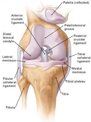 fáj a térd külső ízülete