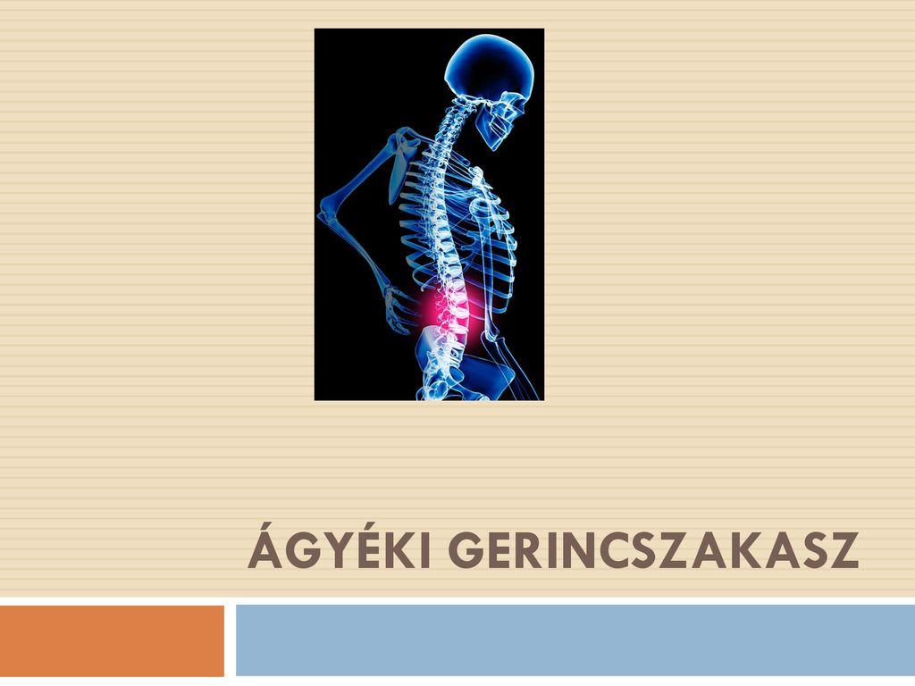 A gerincsérv tünetei   BENU Gyógyszertárak