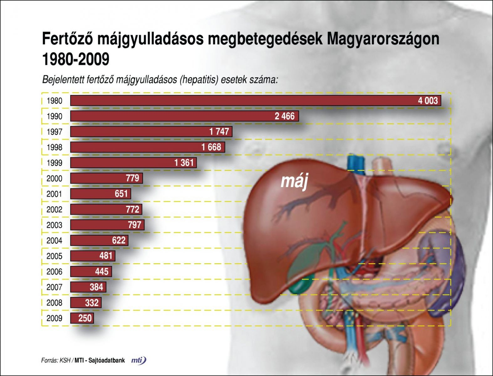 Mit kell tudnod a hepatitiszekről? - erbenagrar.hu