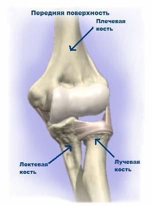 fájdalom könyökízületek Az osteoarthritis a kötőszövet betegsége