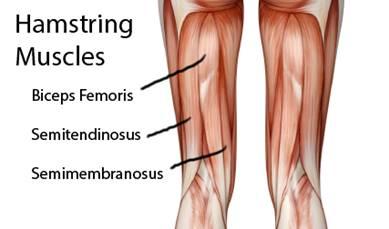 a bokaízület ligamentumainak sérülése futás közben a csípőízület inak gyulladásának kezelése