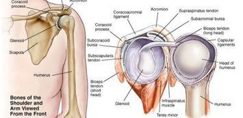 ízületek váll fájdalma boka duzzadt artrosis