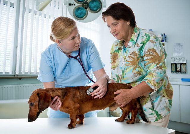 Dorn terápia - Gyógytorna | Manuálterápia | KaToNa Rehab
