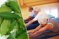 gyógynövények a boka ízületének artrózisához dimexid az ízületek gyulladásában