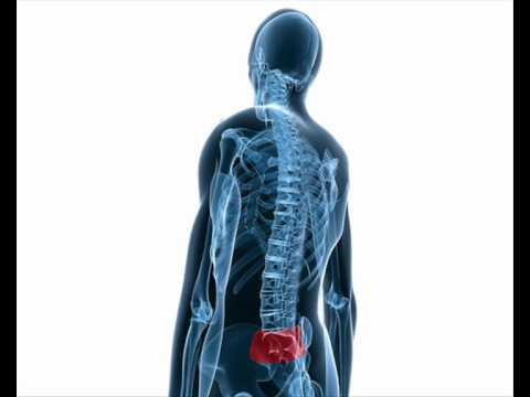 Kezdőoldal - SI terápia - japán gerinckezelés