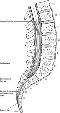 Csípőizületek betegségei   CMed Rehabilitációs és Diagnoszikai Központ